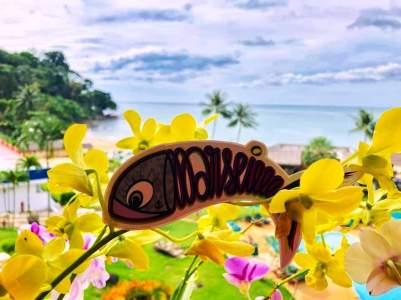 Sardine Of Marseille à Kaho Lak en Thaïlande