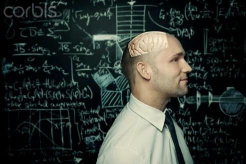 Brain of an intelligent man