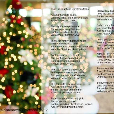 Countless Christmas Trees