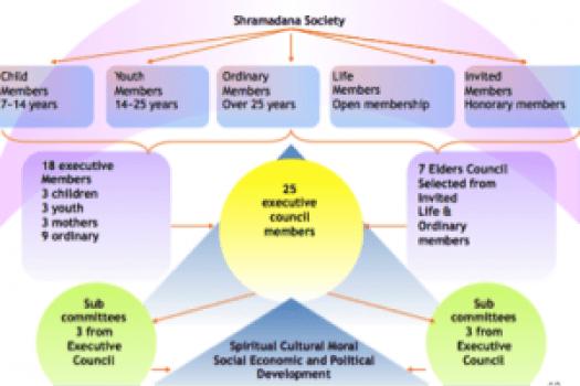 organization1