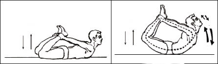 my yoga journal v  freeasacat