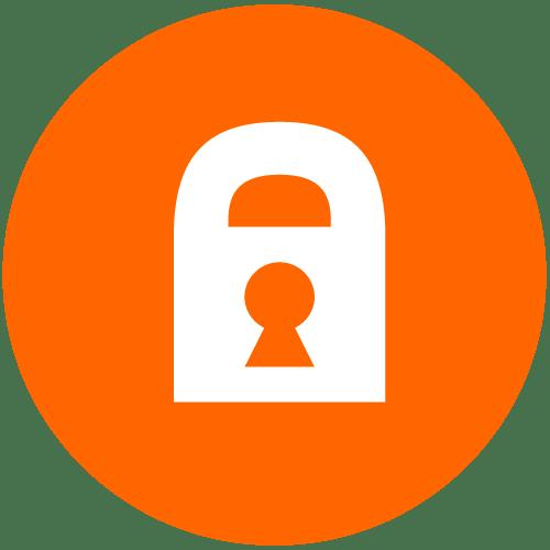 Executive Security Employment