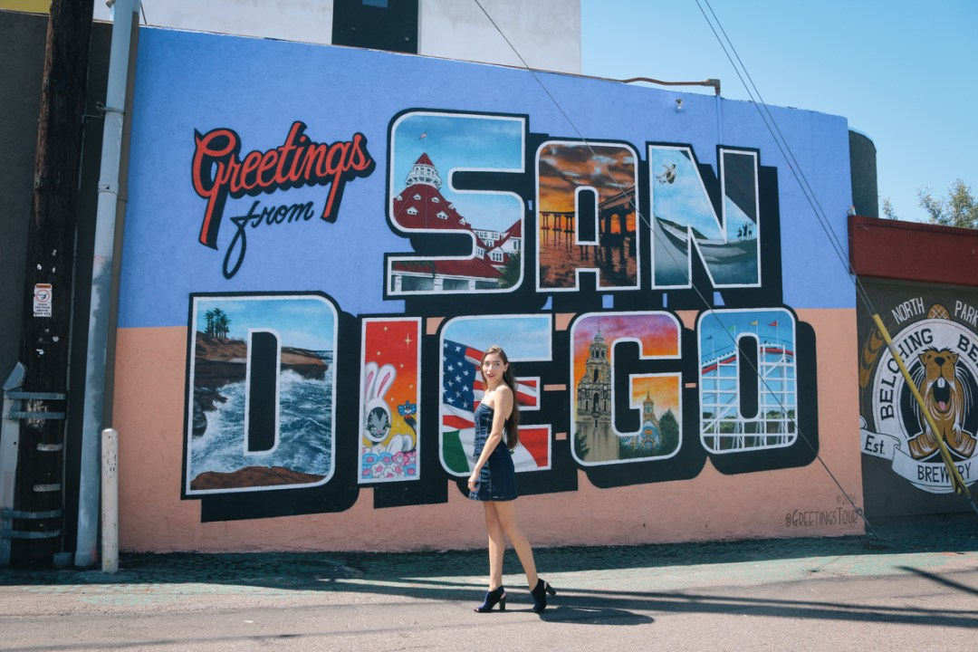Sasha San Diego Greetings from San Diego Mural Sasha San Diego
