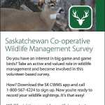 Sage-grouse survey uses innovative approach to find endangered birds in Saskatchewan SouthWest Saskatchewan  Saskatchewan Grasslands National Park Environment