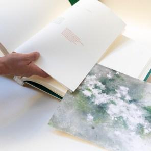 libro con texto bilingüe de Clarice Lispector descripción del jazmín