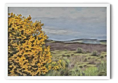 Wall art picture PT02: Broom Over Highlands. Watercolour over pencil sketch