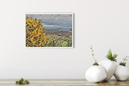 "Wall art picture Broom Over Highlands (16.5"" x 11.7"")"