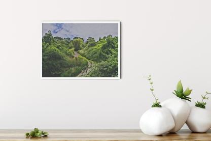 "Gordon Gardens Wall Art Picture (11.7""x16.5"")"