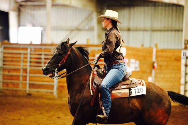 Beginner Horseback Riding Mistakes Arabian