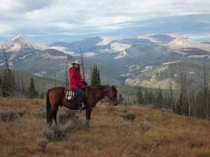 Wyoming Gros Ventre Wilderness Horse Blog