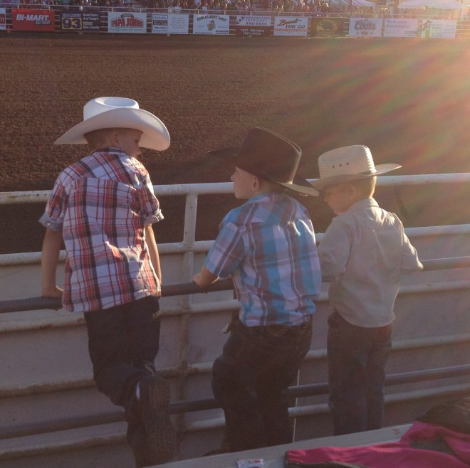 rodeo kids, future rodeo stars