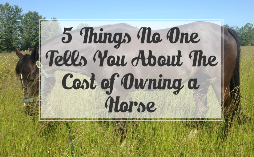 Five Things No One Tells You About The Cost of Owning a Horse