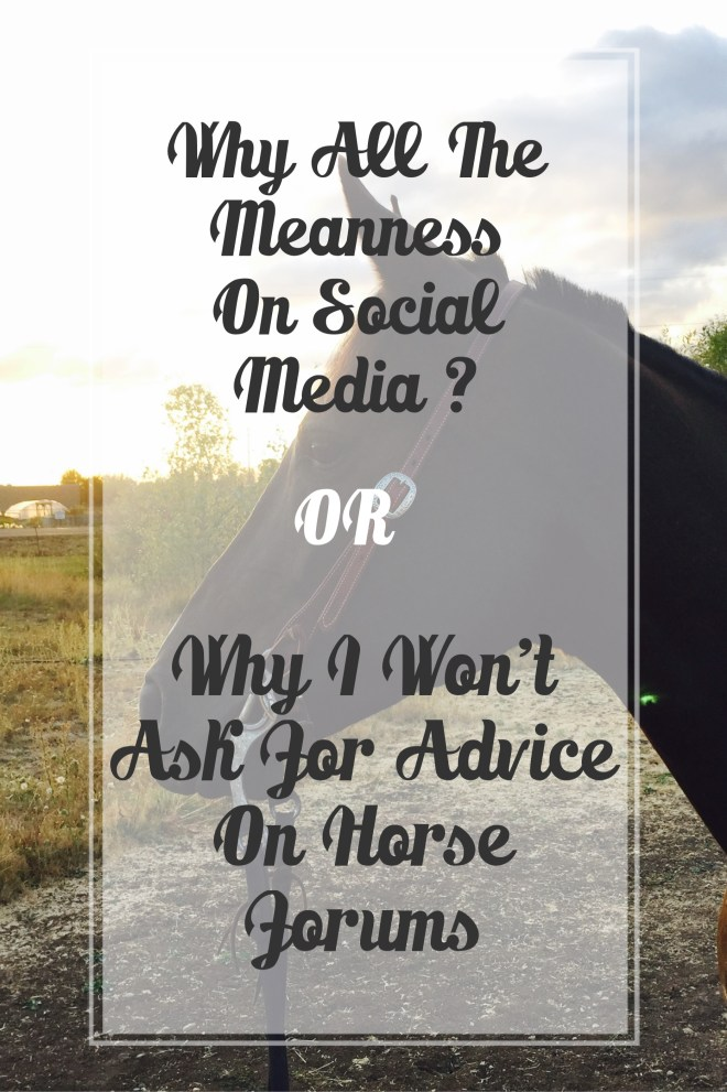 Meanness on Social Media and Horse Forums