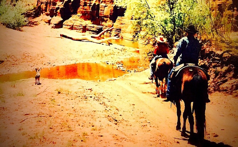 Arizona Guest Ranch Trail Ride