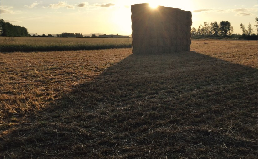 Stacked Hay at Sunset