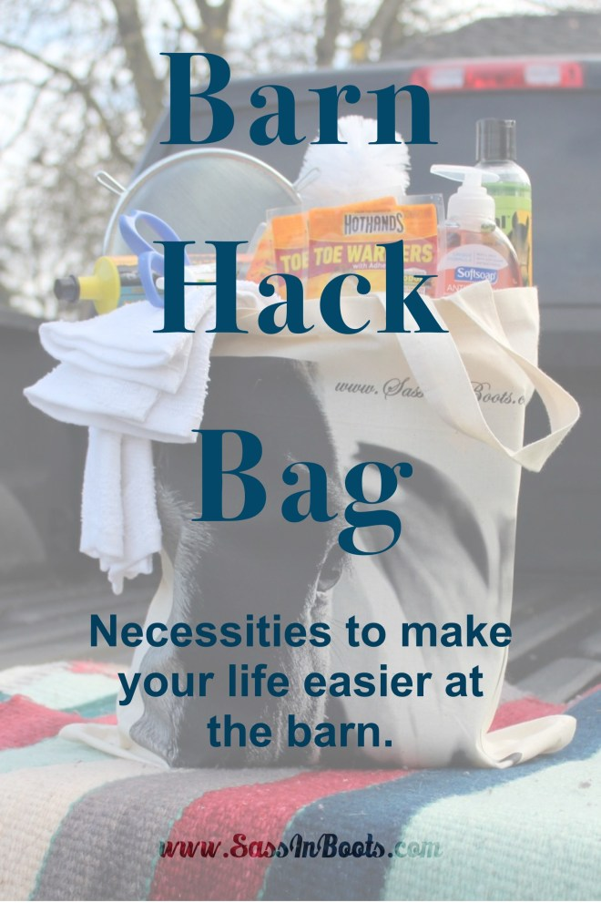 Barn Hack Bag Necessities To Make Your Life Easier At The Barn