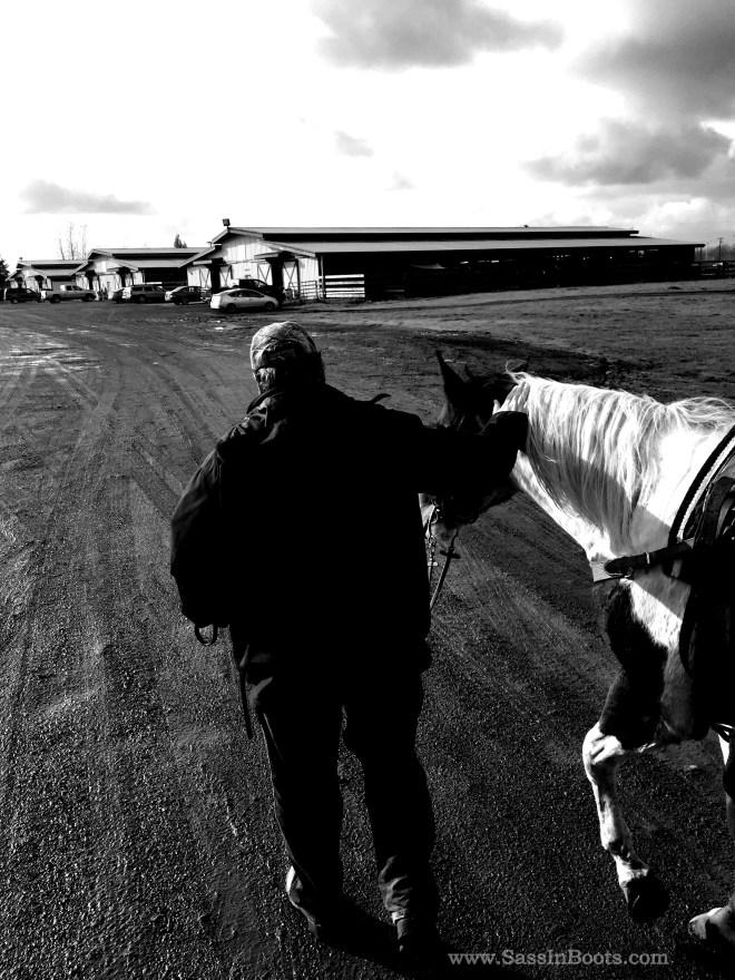 Horse Husband Barn Husband