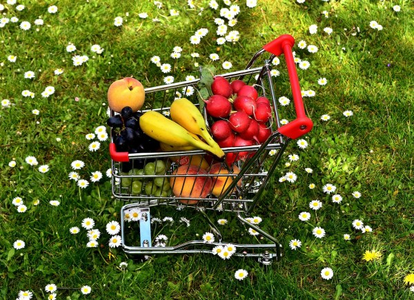 Ways to Live Healthy on a Budget - SassyCritic.com