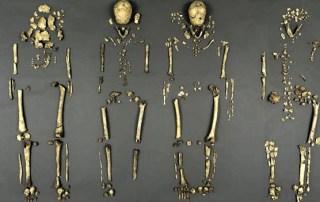 Four Founders of Jamestown Identified sassy jane genealogy