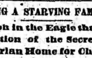 newspaper serendipity in 1884 Brooklyn