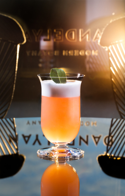 "Air Raid, Dandelyan launches new ""The Modern Life of Plants"" cocktail menu"