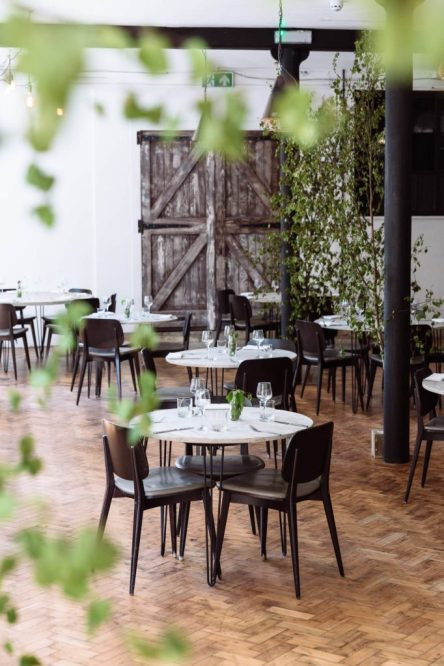 Native restaurant reopens