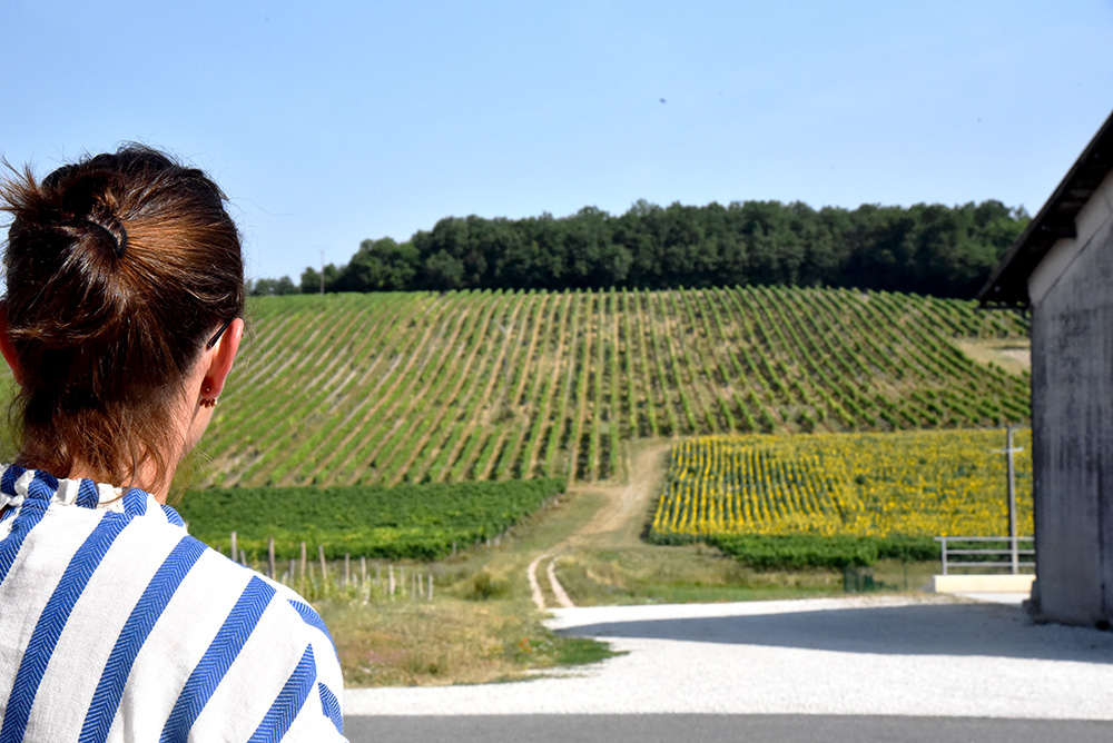 Marie and Bonneuil Vineyard