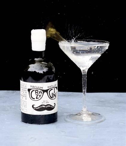 Crazy Gin Gibson Martini ©SatedOnline smaller
