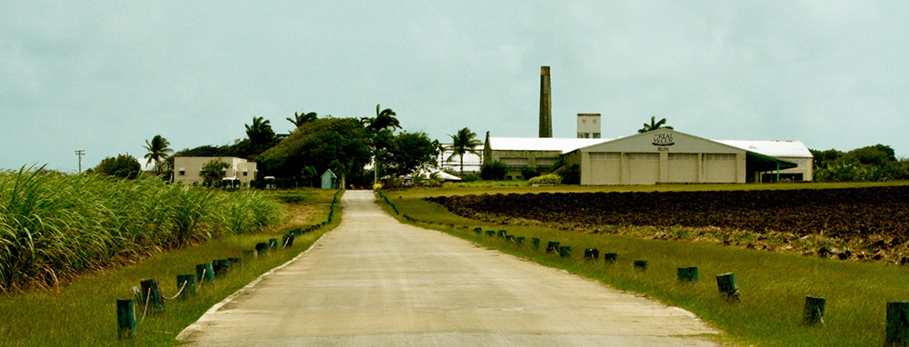 The Real McCoy, Foursquare Distillery, Barbados