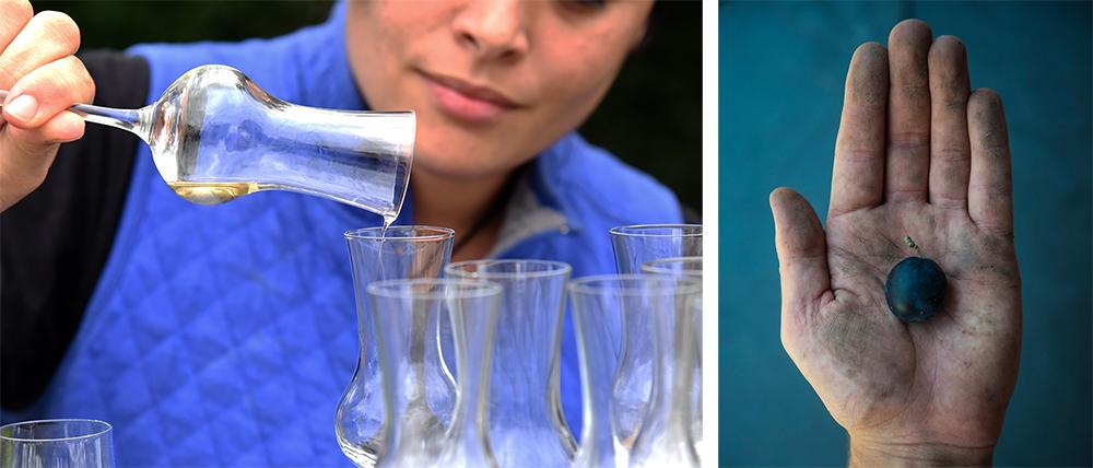Capreolus Distillery damson eau de vie ©SatedOnline