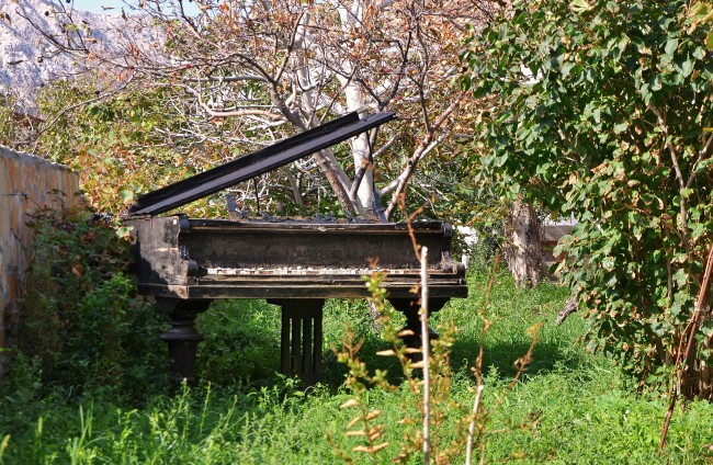 Photo Essay: The Old Grand Piano in a Croatian Backyard