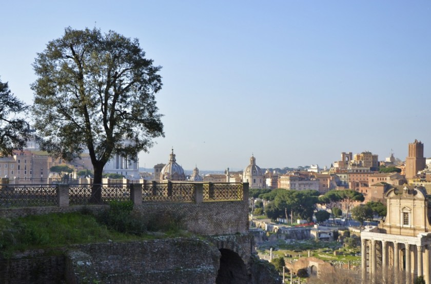 Rome seen from the Palatin Hill
