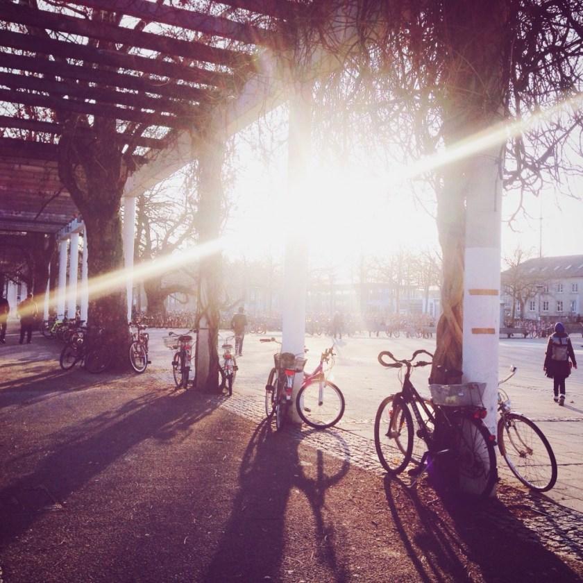 February light in Göttingen, Germany