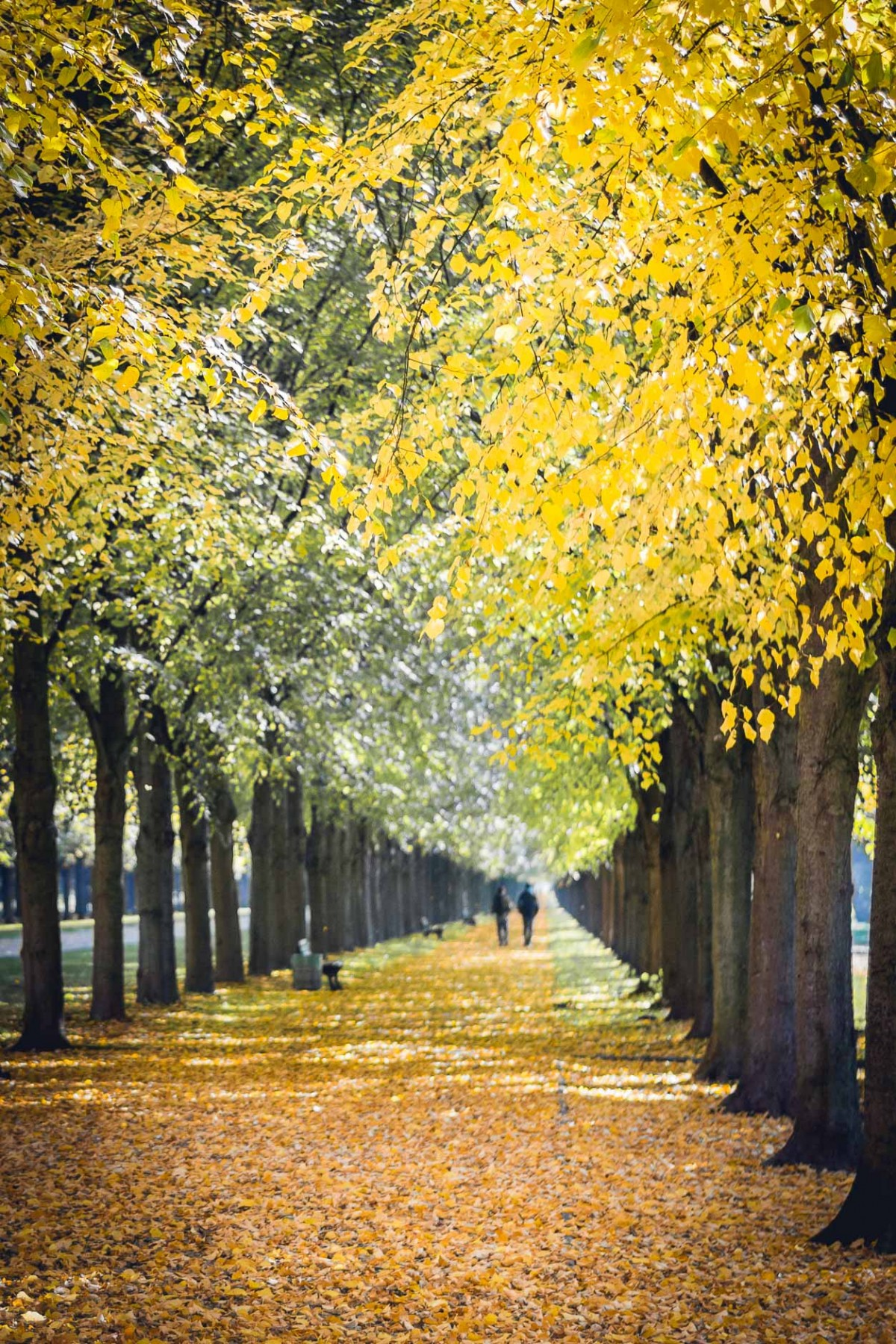Hannover, Lower Saxony, Germany