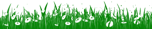 Spring-flower-with-grass-border-photoshop-brushes