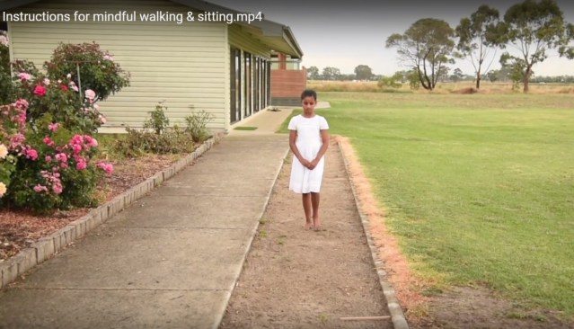 Visuals and instructions for mindful walking & sitting