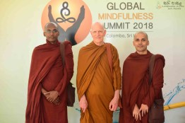 Global Mindfulness Summit 2018 - Day1 (37)