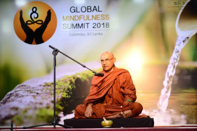 Global Mindfulness Summit 2018 - Inauguration (61)