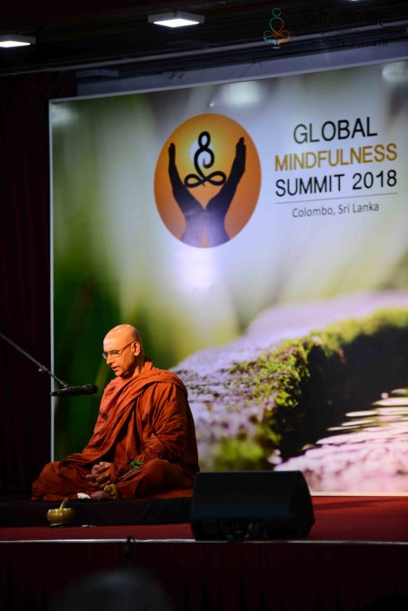 Global Mindfulness Summit 2018 - Inauguration (62)