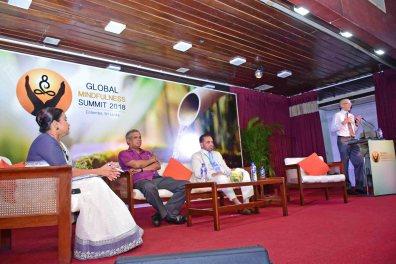 Global Mindfulness Summit 2018 - Day2 (65)