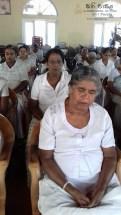 Sati Pasala Programme for Elders in Daulagala (3)