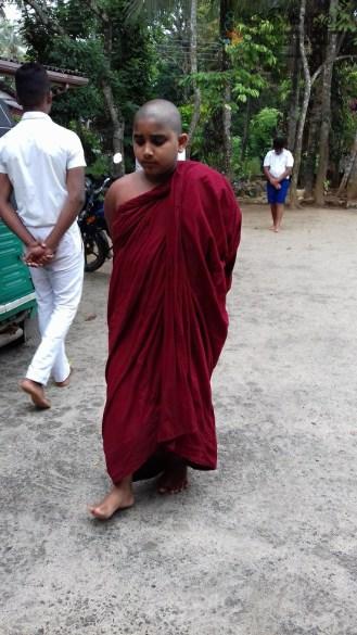 Sati Pasala at Alapalawala Pirivena, Daulagala (17)
