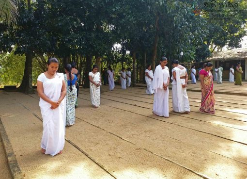 Mindfulness Programme for Primary Teachers, Negombo Education Zone