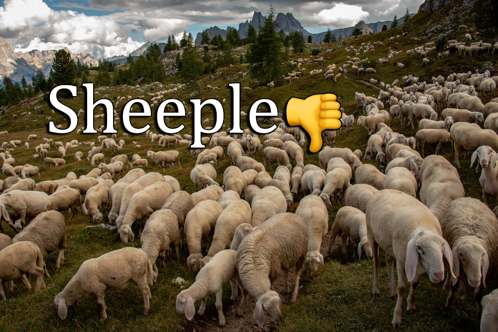 "4 Ways to Tell If You Use the Word ""Sheeple"" Too Much"