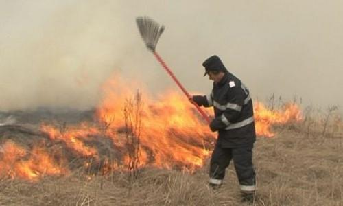 10 hectare de vegetație uscată, mistuite de flăcări. Incendiul, provocat intenționat