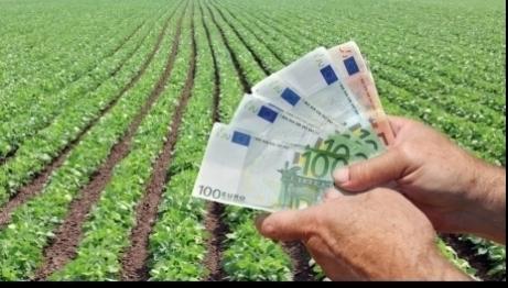 Fermierii maghiari din județul Satu Mare primesc sprijin financiar direct din Ungaria pentru cumpărarea de pământ