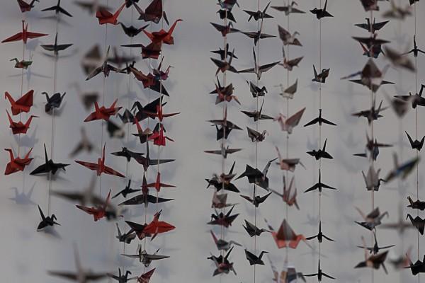 Linnut, linnut