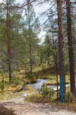 Patikka Luulammelle 2014-18