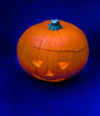 Halloween_Pumpkin_-8