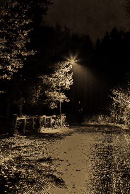 lamppu-4